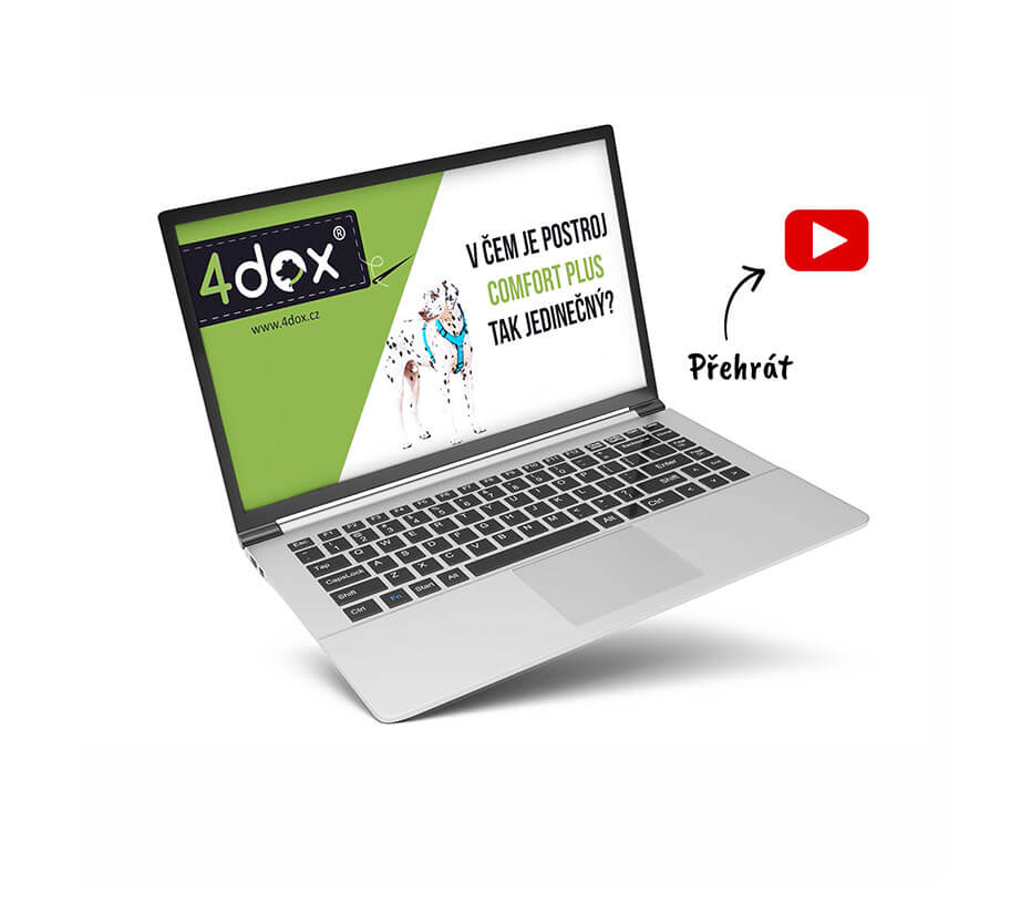 4dox_video